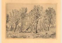 Ensor - Bouquet d'arbres